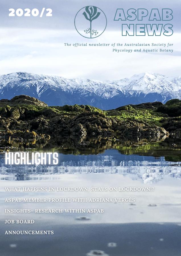 Newsletter 2020-2 Cover